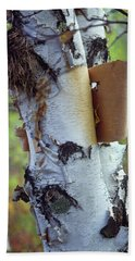 Birch Bark, Leaf And Nest Hand Towel