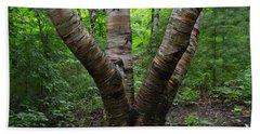 Birch Bark Tree Trunks Bath Towel