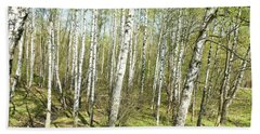 Birch Forest In Spring Hand Towel