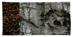 Bath Towel featuring the photograph Birch by Kenneth Campbell