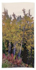 Birch Trees #2 Hand Towel