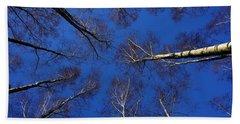 Birch Trees In Winter Bath Towel