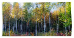 Birch Trees Turn To Gold Bath Towel