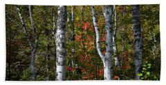 Hand Towel featuring the photograph Birches by Elena Elisseeva