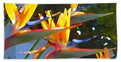 Bird Of Paradise Backlit By Sun Hand Towel