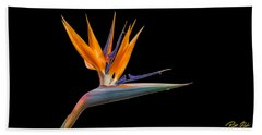 Bird Of Paradise Flower On Black Bath Towel