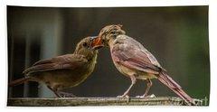 Bird Parenting Hand Towel
