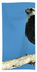 Birds 10 17 Bath Towel