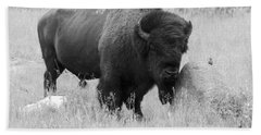 Bison And Buffalo Bath Towel