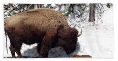 Bison Calf After Birth Hand Towel