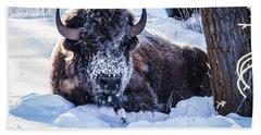 Bison At Frozen Dawn Bath Towel
