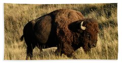 Bison  Hand Towel by Cindy Murphy - NightVisions