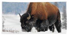 Bison Roaming In The Lamar Valley Hand Towel