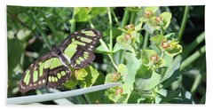 Black And Green Butterfly Hand Towel