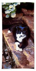 Black And White Cat Resting Regally Hand Towel
