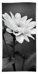 Hand Towel featuring the photograph Black And White Coreopsis Flower by Christina Rollo