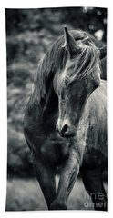 Black And White Portrait Of Horse Hand Towel