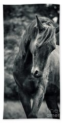 Black And White Portrait Of Horse Bath Towel