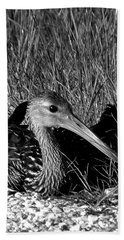 Black And White Resting Limpkin Bird Hand Towel