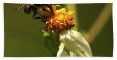 Black And Yellow Bee Pollinating Hand Towel