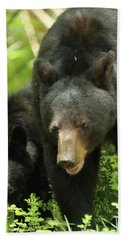 Black Bear And Cub On Ground Bath Towel by Coby Cooper