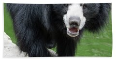 Sun Bear Bath Towel by Inspirational Photo Creations Audrey Woods