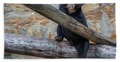 Black Bear Cub Sitting On Tree Trunk Hand Towel