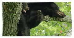 Black Bear In Tree With Cub Bath Towel by Coby Cooper