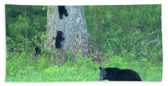 Black Bear Sow And Four Cubs Bath Towel by Coby Cooper