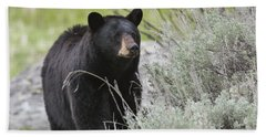 Black Bear Sow Hand Towel