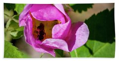 Bath Towel featuring the photograph Black Bee Collecting Pollen by Darcy Michaelchuk
