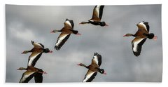 Black Bellied Whistling Ducks Hand Towel