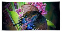 Black Blue Butterfly Hand Towel by Shirley Moravec