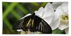 Black Butterfly Hand Towel