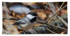 Black-capped Chickadee 0571 Hand Towel by Michael Peychich