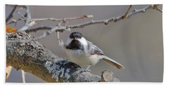 Bath Towel featuring the photograph Black Capped Chickadee 1109 by Michael Peychich