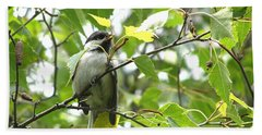 Bath Towel featuring the photograph Black Capped Chickadee  by Angie Rea