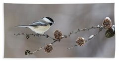 Bath Towel featuring the photograph Black-capped Chickadee by Mircea Costina Photography