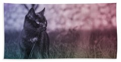 Black Cat Hand Towel by Silvia Bruno