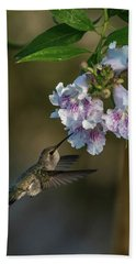Black-chinned Hummingbird Bath Towel by Martina Thompson