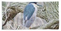 Black-crowned Night-heron  Hand Towel