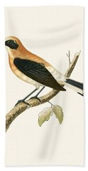 Black Eared Wheatear Hand Towel by English School