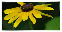 Black Eyed Susan Hand Towel