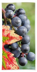 Black Grapes On The Vine Bath Towel
