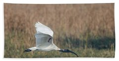 Black-headed Ibis 01 Bath Towel
