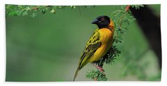 Black-headed Weaver Bath Towel