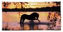 Black Horse Bathing In Sunset River Hand Towel