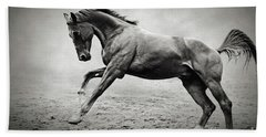 Black Horse In Dust Hand Towel