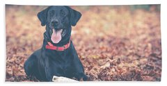 Black Labrador In The Fall Leaves Bath Towel