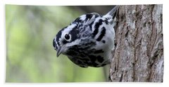 Black-n-white Warbler Bath Towel